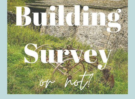 Buying Without a Survey #tip2