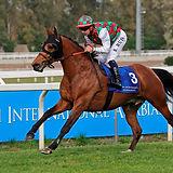 Kanaan 28_4_2019 race 5 Roma Capanelle (