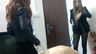 Sexy Guangzhou goddesses dominate fat sub 两位网红广州女S双调教自卑的胖狗