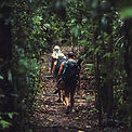 hiking-Walking-Trails.jpg