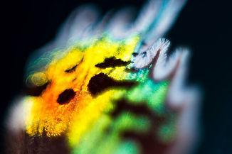 fotograf_abstrakt_01-.jpg