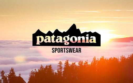 patagonia sportswear