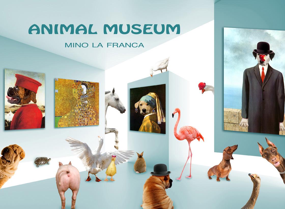 Animal Museum