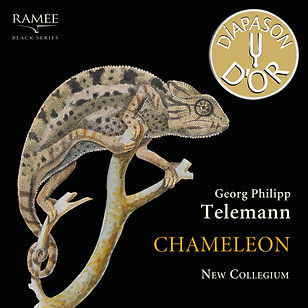 New Collegium CD Chameleon Diapason d'Or