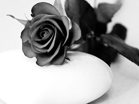 白黒の世界