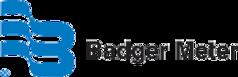 Badger Meter Blue Logo Horizontal_72dpi.png