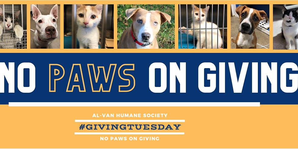 Giving Tuesday - No Paws on Giving