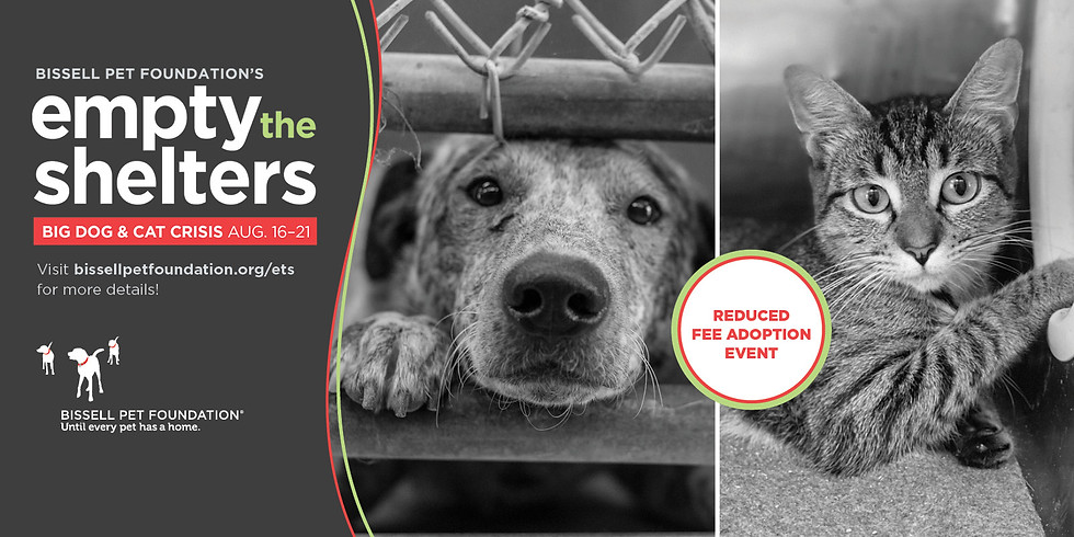 Empty the Shelters