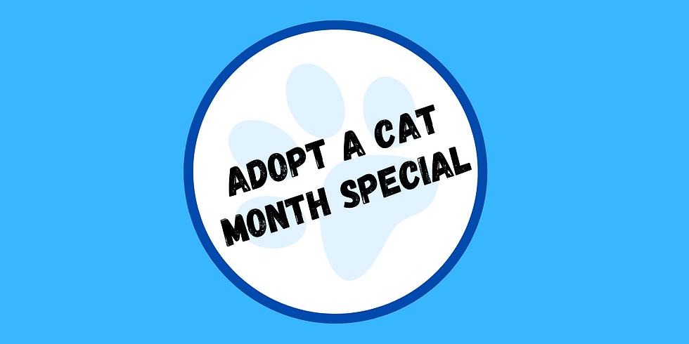 Adopt a Cat Month Adoption Event