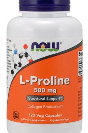 L - PROLINA: producción de colágeno, Sist. óseo-articular