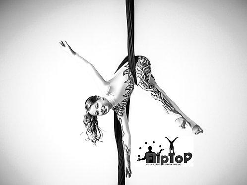 Cirque avec FlipTop