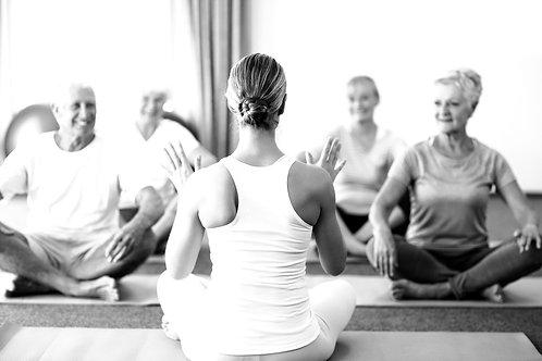 Vini Yoga progression