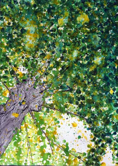tree #1 (sold)