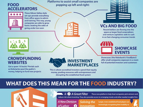 Infographic from Rabobank about Food Start Ups
