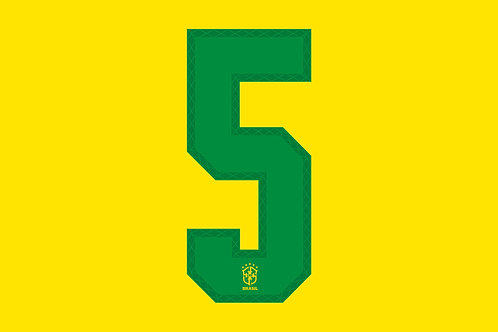 Brazil Home Number - Adult -5 (Pack of 10)