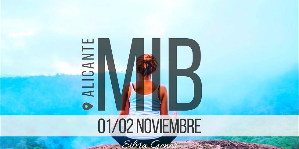 """01 y 02 NOVIEMBRE   ALICANTE """"CURSO MIB"""""""