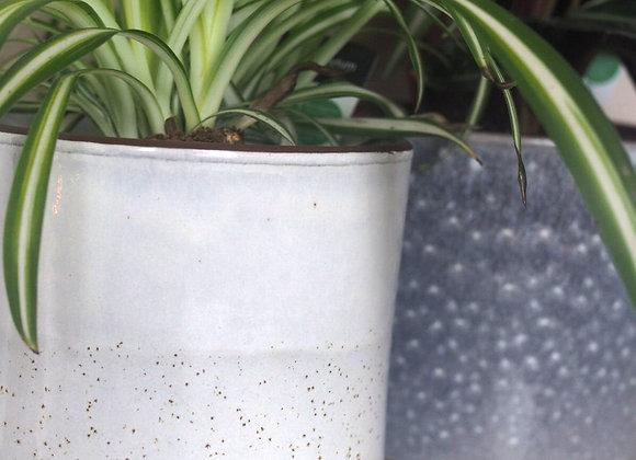 Cream Speckled Terracotta Plant Pot