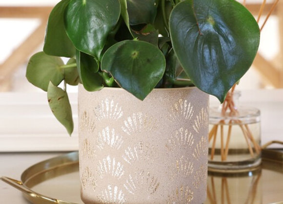 Cream and Gold Shell patterned Ceramic Planter
