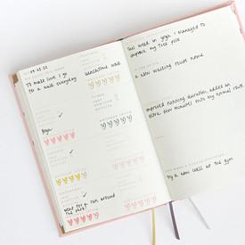 wellness journal open.jpeg
