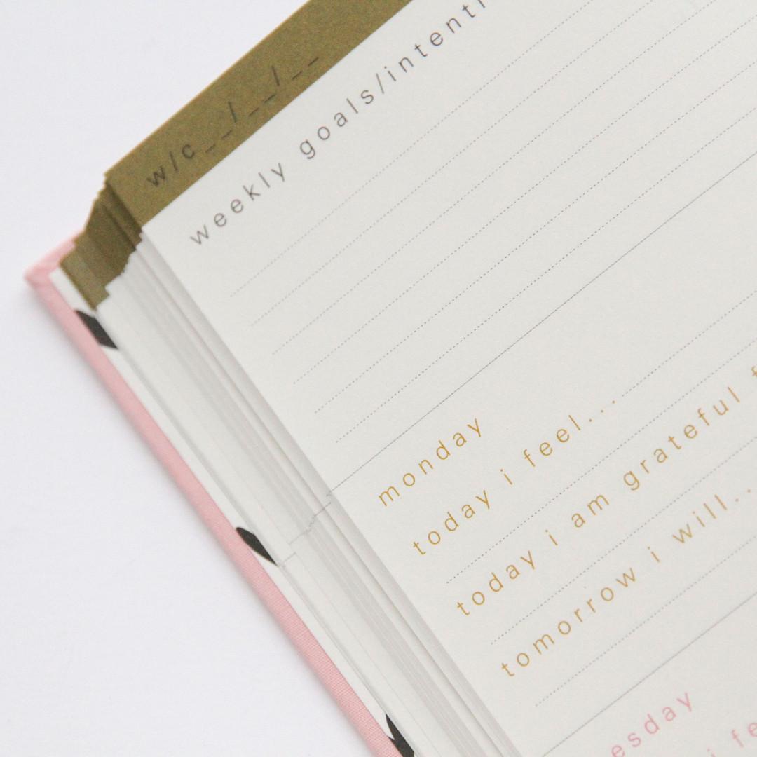 wellness journal close up.jpeg