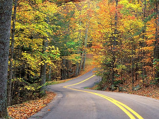 road-in-fall-1398796.jpg