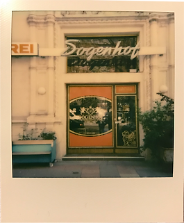 dogenhof polaroid 1.png