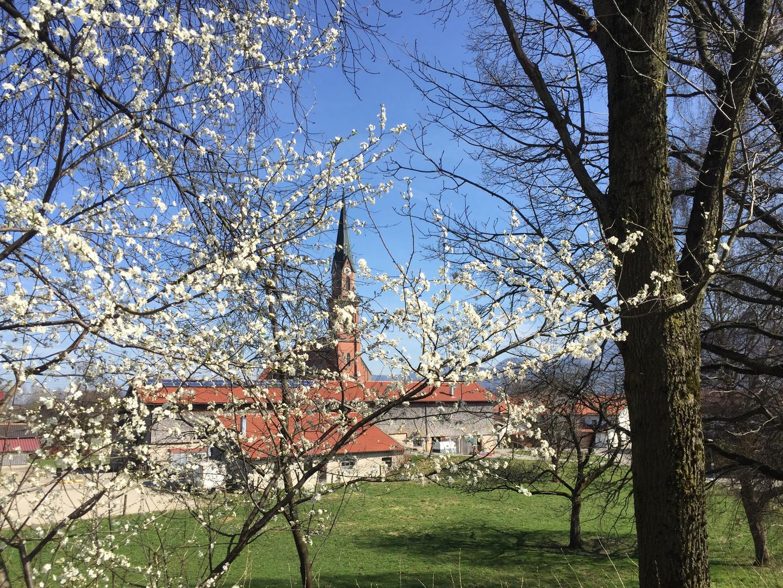 Übersee Frühling