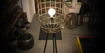 STEHLAMPE CAGE
