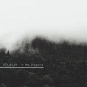 JOY AGAR - IN THE DISGUISE