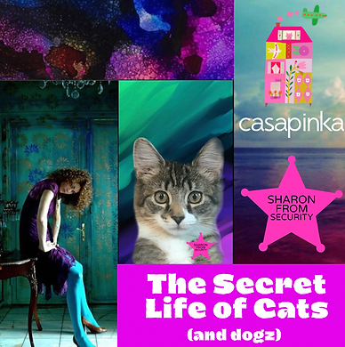 Casapinka The Secret Life of Cats (and Dogz)