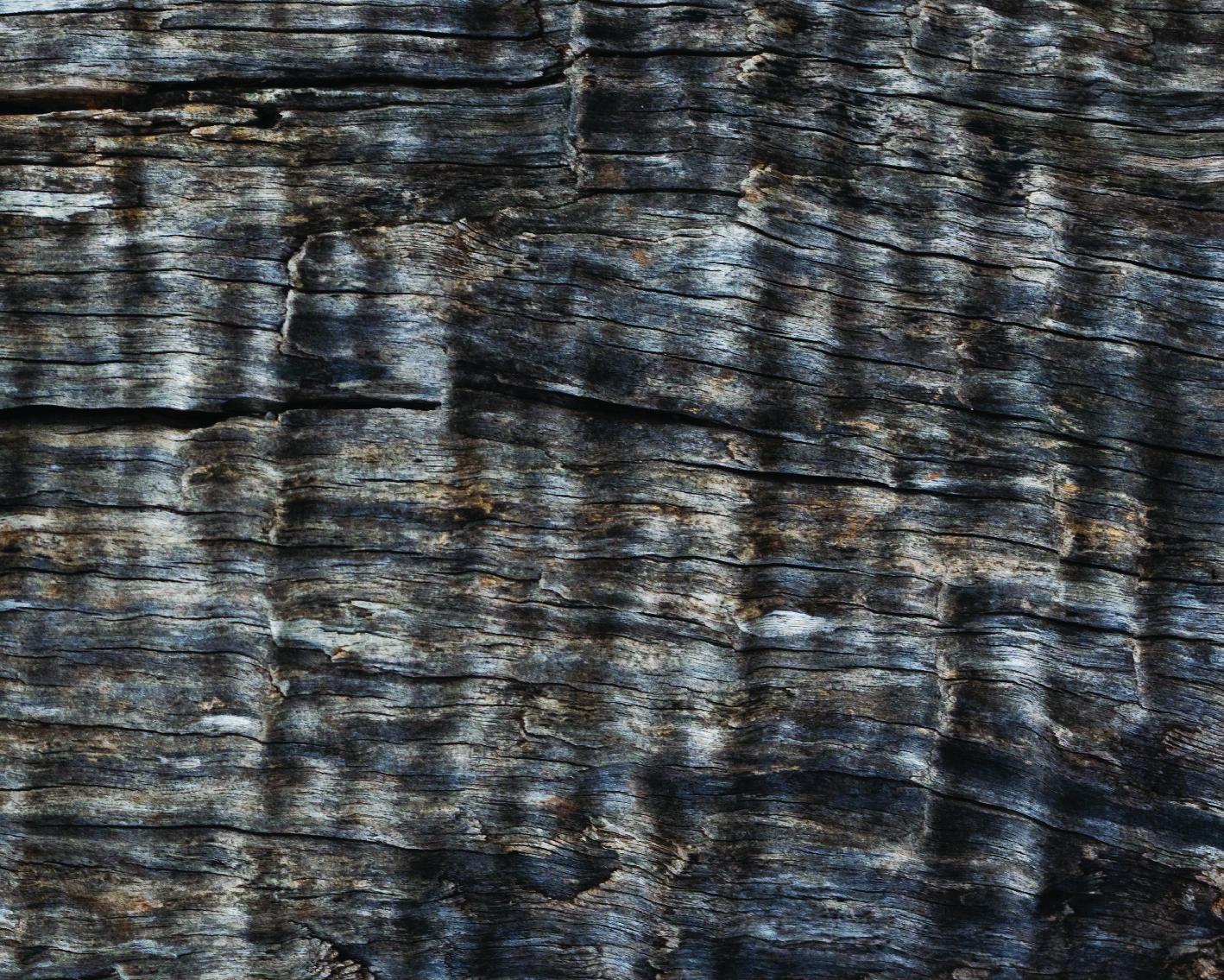 _wood-17