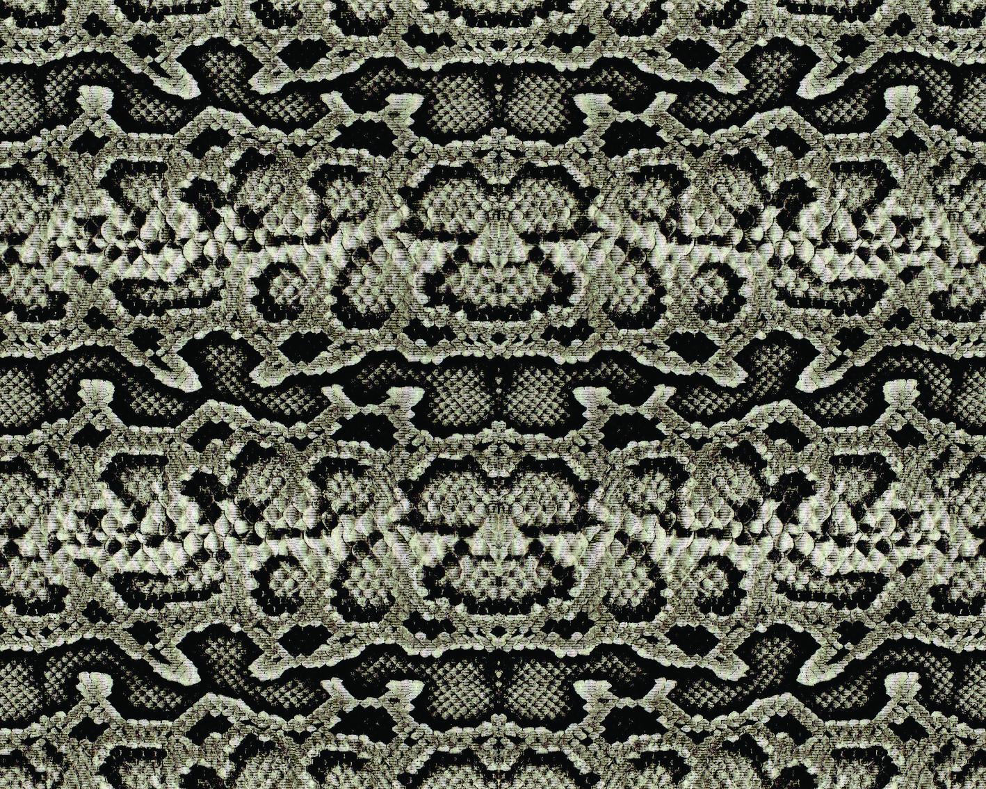 Snake 30-36-04