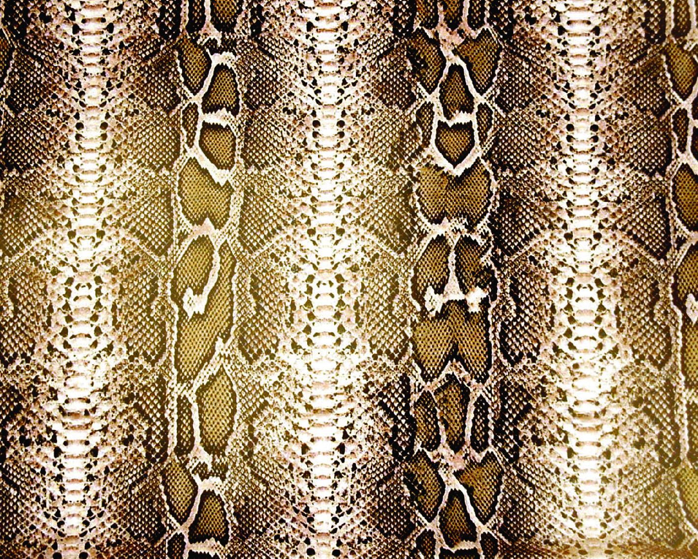 snake skins-18
