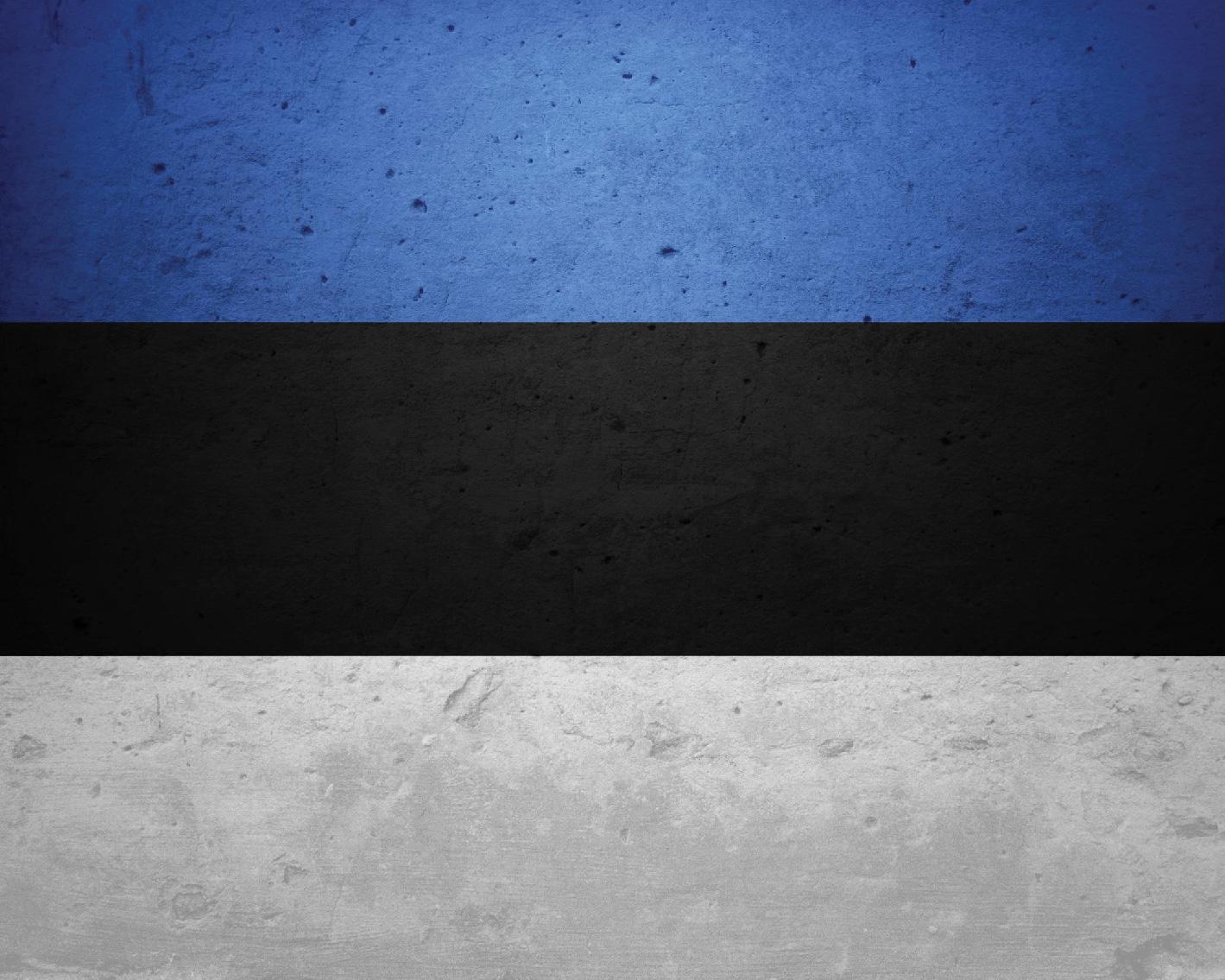 Flag_Series-27