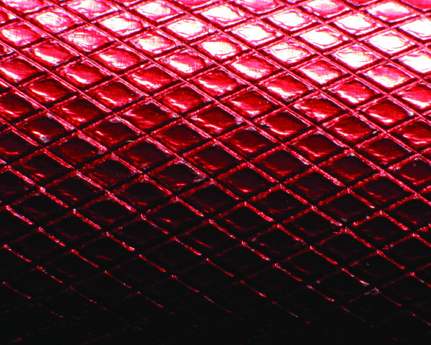snake skins-05