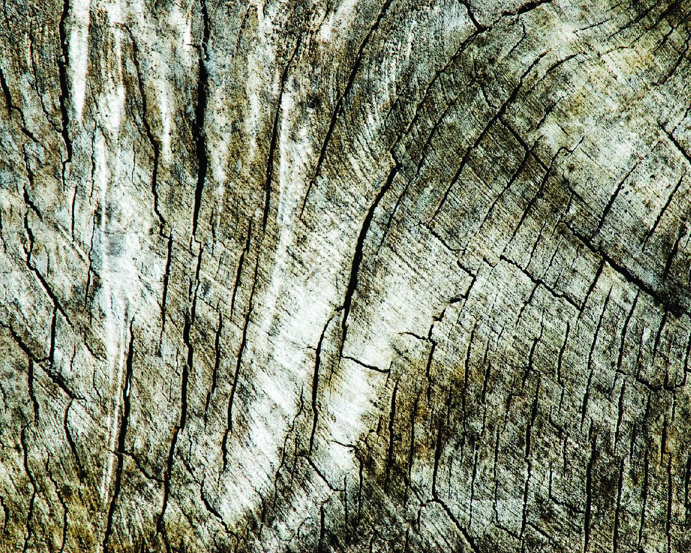 _wood-18