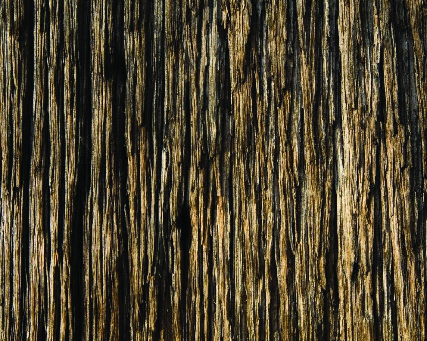 _wood-03