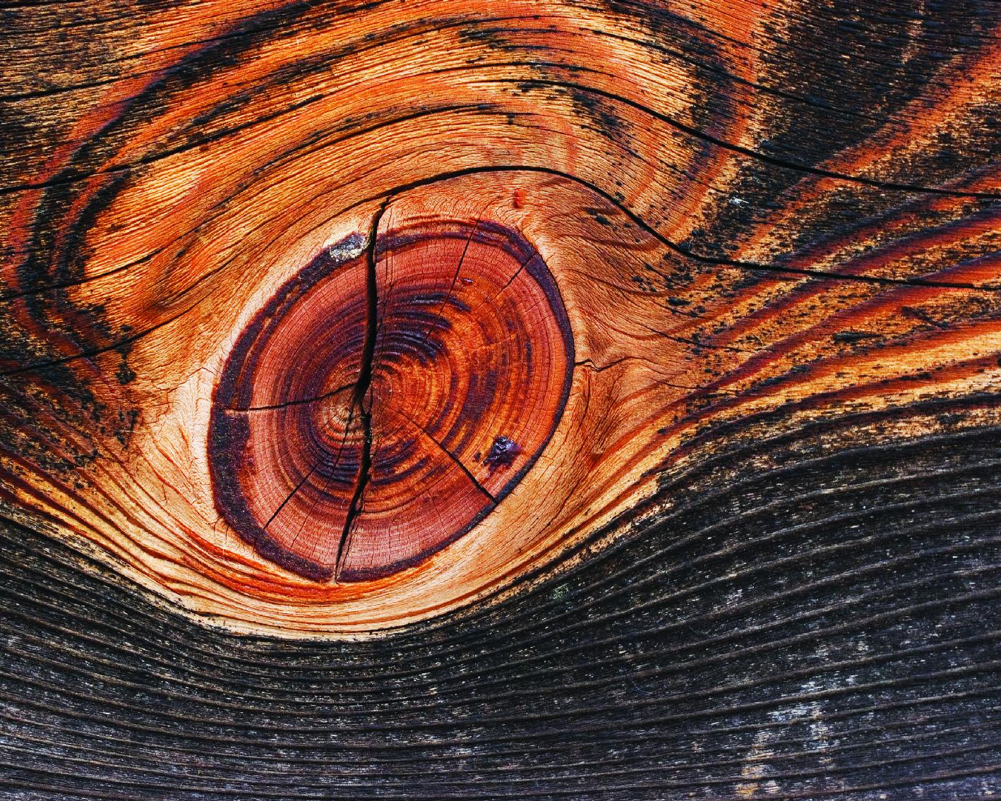 _wood-14