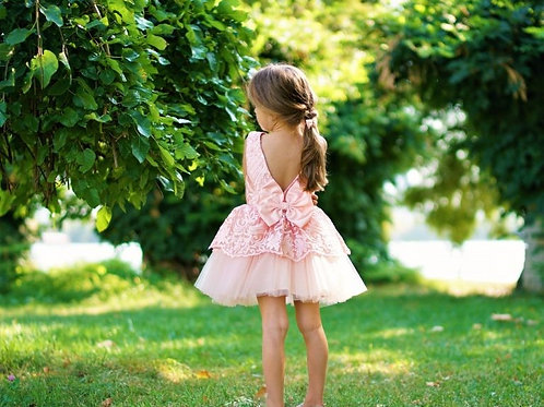 Andrea Party  Dress Pink and Blue