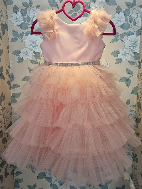 Alyona Pink Princess Dress