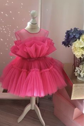 Knee Length Rose Aurora Princess Dress