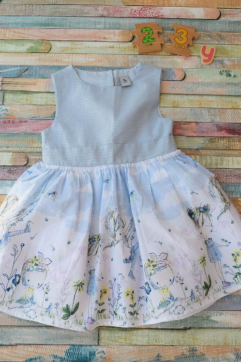 Blue Dress Tu 2-3 Years Old