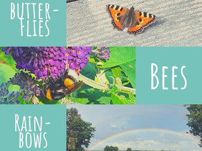 Butterflies, bees and rainbows