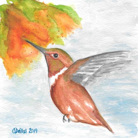 Hummingbird Happiness