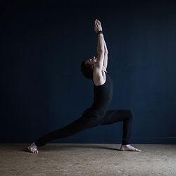 Alex Blake Yoga, Cours, Formation, 50h et 200h Yoga Alliance, Paris, France