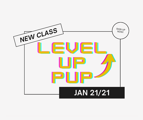 Level Up Pup New(2).png