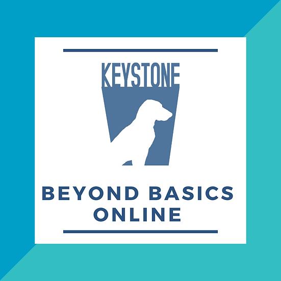 Beyond Basics Online