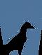 keystone logoblu.png