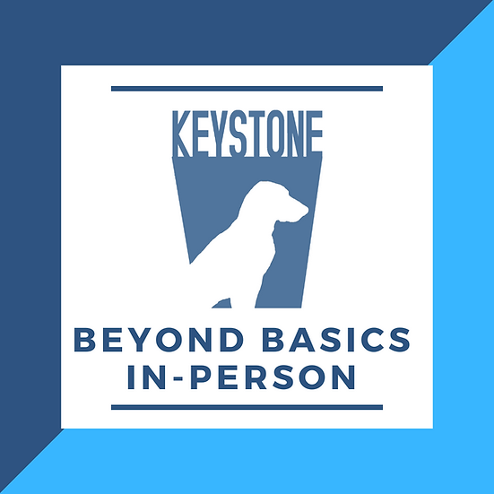 Beyond Basics In Person