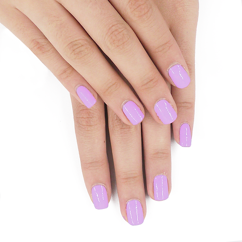 Soft Lilac / 柔和淡紫色